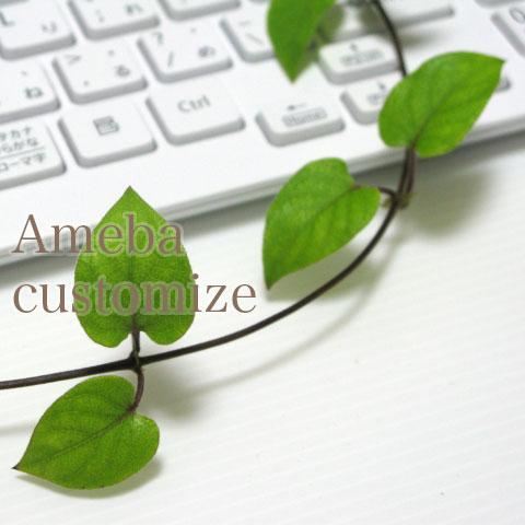 Ameba customize